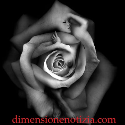 Donne il fiore