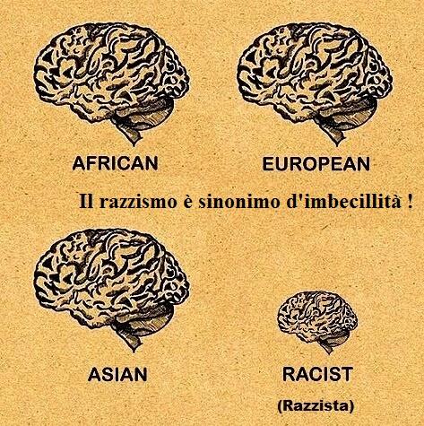 Il razzismo è sinonimo d'imbecillità !