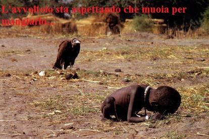 L'avvoltoio sta aspettando che muoia per mangiarlo