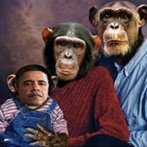 Foto paragona Obama a scimmia, scoppia polemica -
