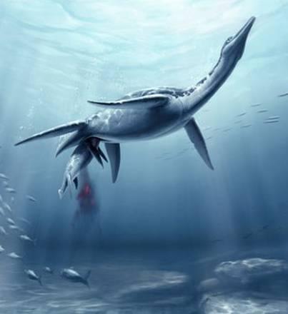 I rettili marini preistorici partorivano come i delfini (fonte: S. Abramowicz, Dinosaur Institute, N