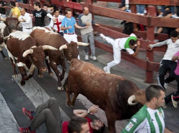 Encierro a San Sebastian, la furia dei tori -