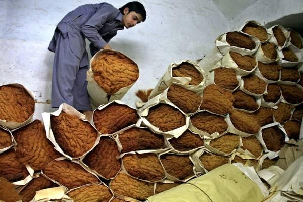 Pakistan, i preparativi per il mese del Ramadan -