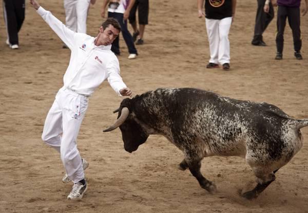 Madrid, San Sebastian de los Reyes: toro e mozo all'encierro -
