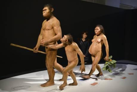 In mostra a Tokyo l'odissea dell'umanita'. Una miniatura di una famiglia di Australopithecus