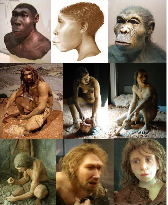 Un'evoluzione è un destino